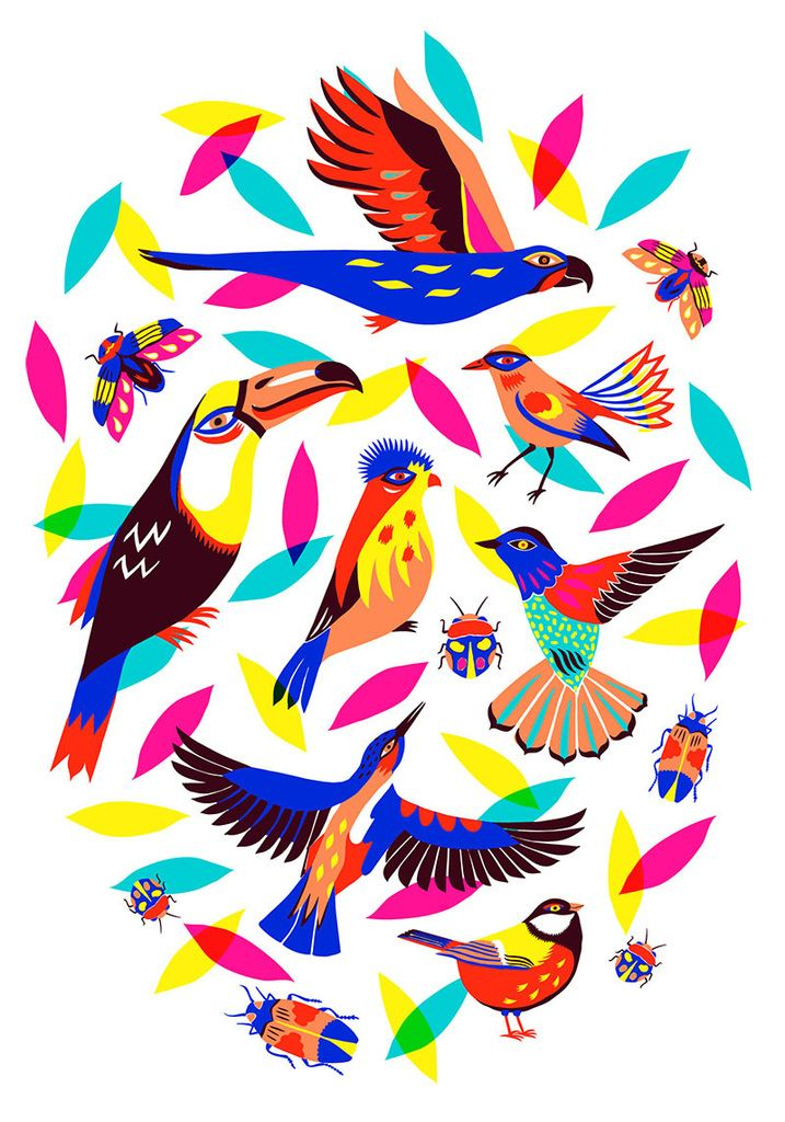 Birds and bugs par Margaux Carpentier