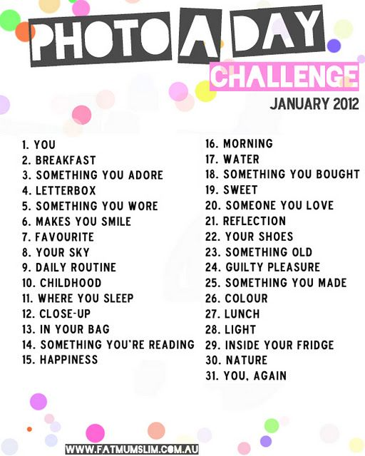 Photo-a-day challenge for January 2012