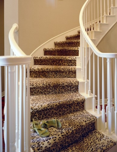 Leopard Carpeted Stairs