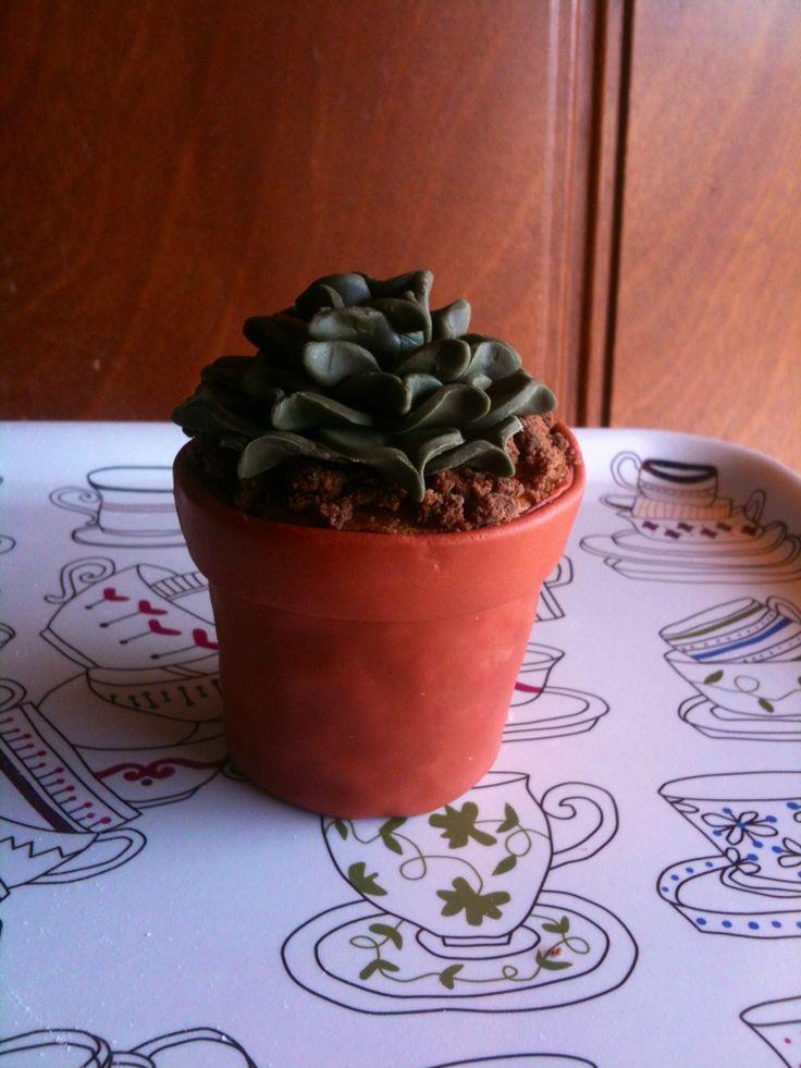Mini cake pianta grassa