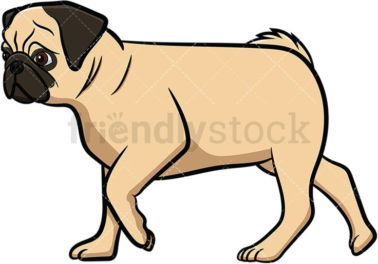 Pug Walking: Royalty-free stock vector illustration of a side view of an apricot pug dog with a curly tail and wrinkled face walking forward. #friendlystock #clipart #cartoon #vector #stockimage #art #pug #cute #mastiff #chinese #dutch #walking