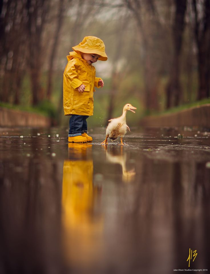 Love! (Photograph Rainy Day by Jake Olson Studios):
