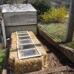 How to Build a Cold Frame in Under 30 Minutes With No Tools - winter is approaching FAST!