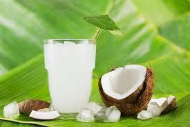TODAS LAS RECETAS : Cómo hacer kéfir o tibicos de agua de coco