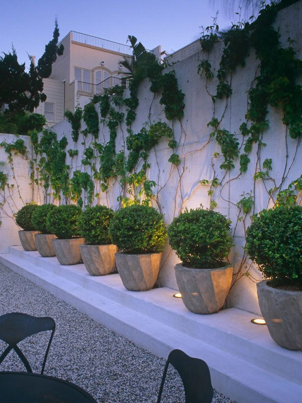pea gravel, climbing vines, rhythmic rusticated pots