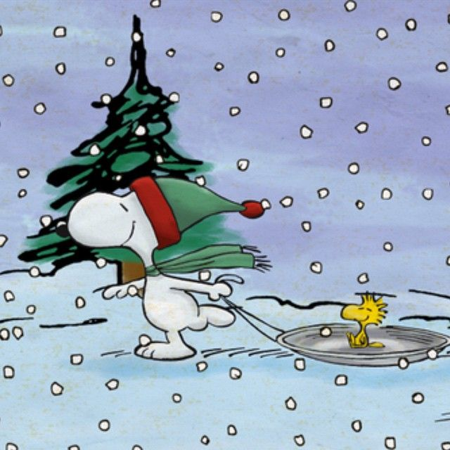Snoopy Wearing Red and Green Winter Cap Pulling Woodstock on Round Sled  During Snowstorm  8edf18a1adb2