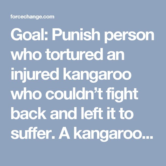 Goal: Punish person who tortured an injured kangaroo who couldn't fight back and left it to suffer.  A kangaroo was found partially skinned and disemboweled yet still alive, left to suffer until it died. The animal had a leg injury, and officials suspect that the person responsible took advantage of the fact that its inability to escape to torture and brutalize it. The animal was found lying in a pool of blood, with a large portion of its skin gone. The animal later died of its injuries…