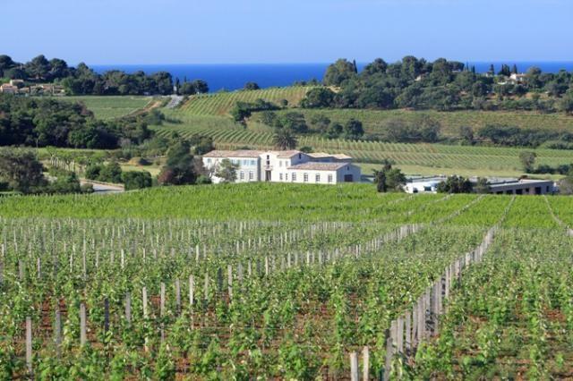Domaine de la Croix - Image gallery / Photothèque | Powered by vin.co