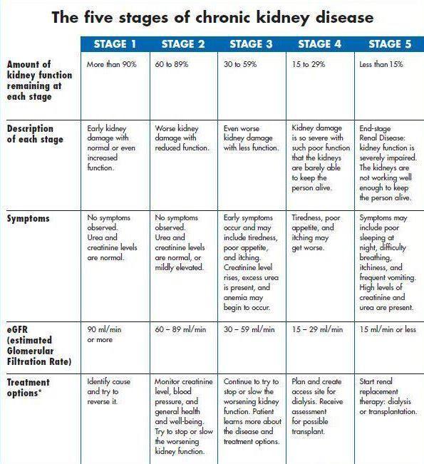Renal Kidney Disorder