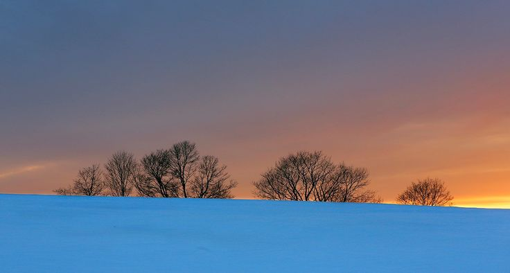 Trees at the edge of a snow-covered field are silhouetted against a colorful sky at Laudholm Farm in Wells. The Wells Reserve at Laudholm manages several hundred acres for fish and wildlife habitat. It is a national estuarine research reserve. Gregory Rec/Staff Photographer