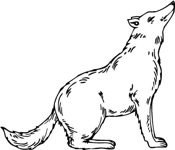 Wolf Wolf Coloring Page Witch Coloring Pages Online Coloring Pages Online Coloring