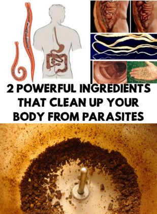 2 Powerful Ingredients That Clean Up Your Body From Parasites