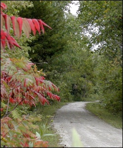 Iowa's Wabash Trace Nature Trail. Trail of the Month, May 2011.