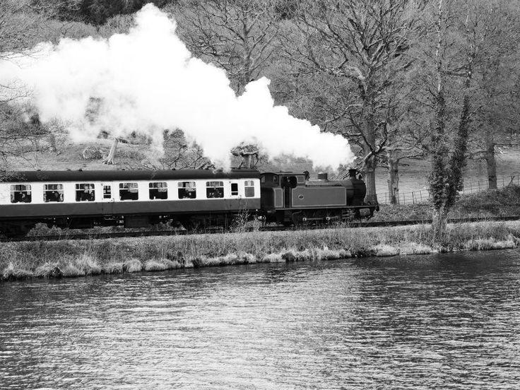 #train #lake #blackandwhite #landscape