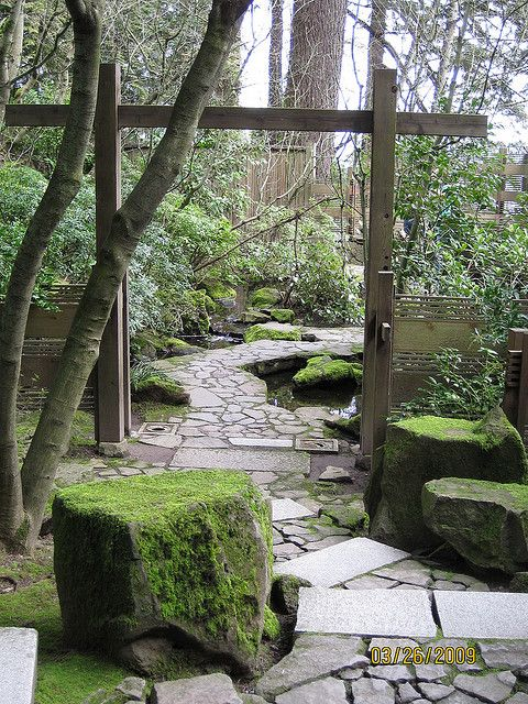 -natural garden | Flickr - Photo Sharing!