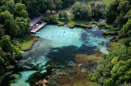 Rainbow Springs : can do a snorkeling trip, look into wetsuits and guides.  School used Americal Dive Center- 821 SE US HWY 19 Crystal River FL 34429