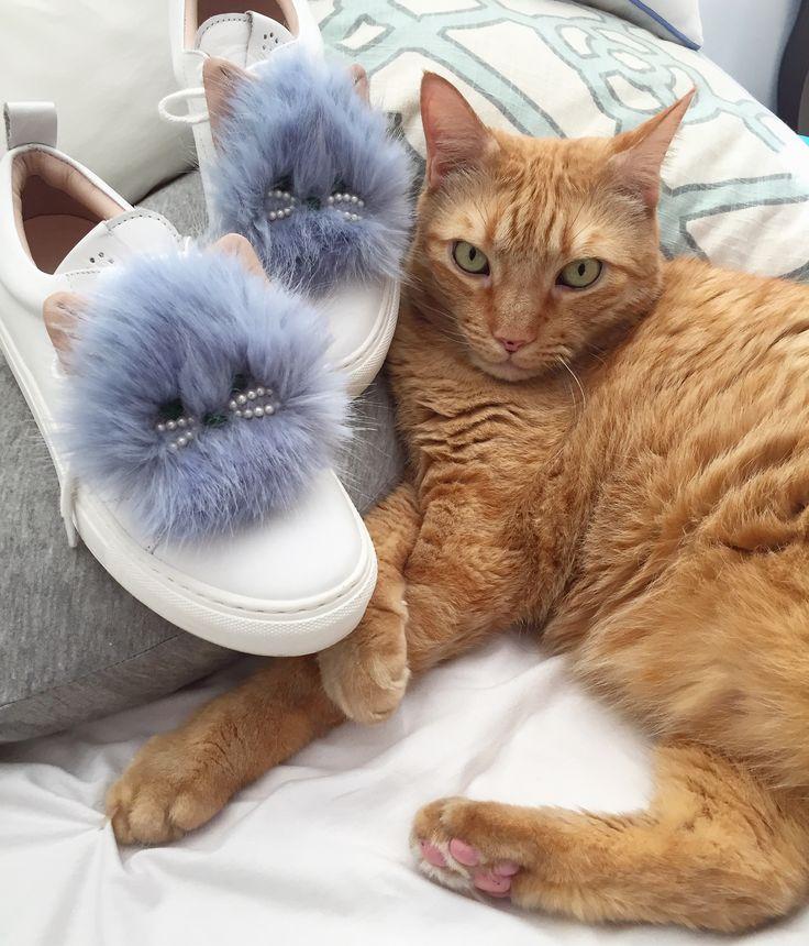 Our feline friends seem to like our Hazel Cat edition! #JosefinasCatSeries