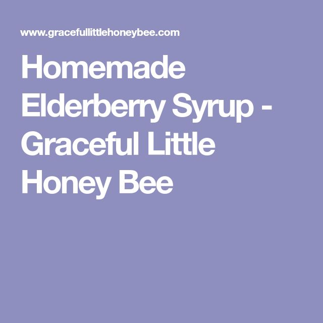Homemade Elderberry Syrup - Graceful Little Honey Bee