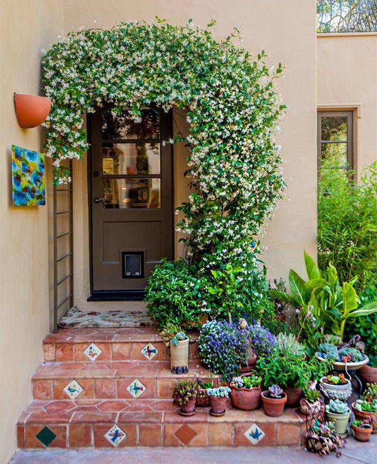 É sempre bom lembrar que plantas são ótimas alternativas para melhorar qualquer decoração e nós já cansamos de falar isso por aqui. Seja na fachada da sua