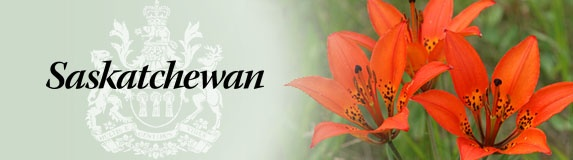 Banner from the Government of Saskatchewan webpage - love our provincial flower!