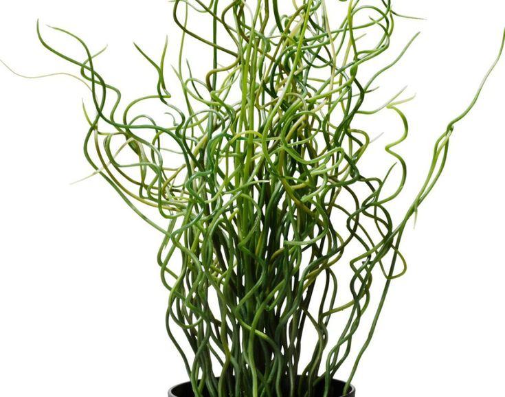 Best 25 fake cactus ideas on pinterest rock cactus for Faux cactus ikea