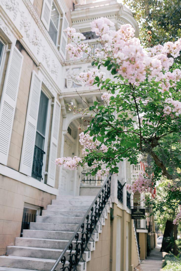 Savannah, Georgia in bloom