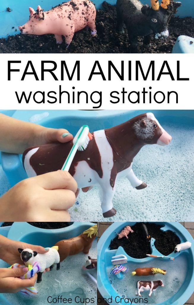 a-washing-farm-animal-sensory-bin-or-washing-station-is-a-big-hit-with-preschoolers