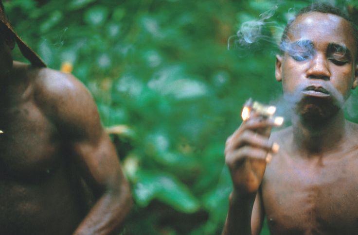 Pot For Parasites? Pygmy Men Smoke Out Worms  |  NPR