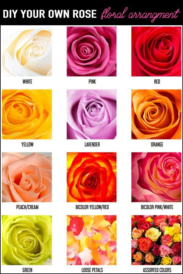 DIY your own rose floral arrangement with wholesale flowers for weddings, bridal showers, baby showers, birthday parties. Rose Flower Arrangements DIY / DIY Rose Bouquet Wedding / Wedding Rose Bouquet / As seen on Brenda's Wedding Blog www.brendasweddingblog.com #roses #floral #flowers #weddingflowers #diywedding