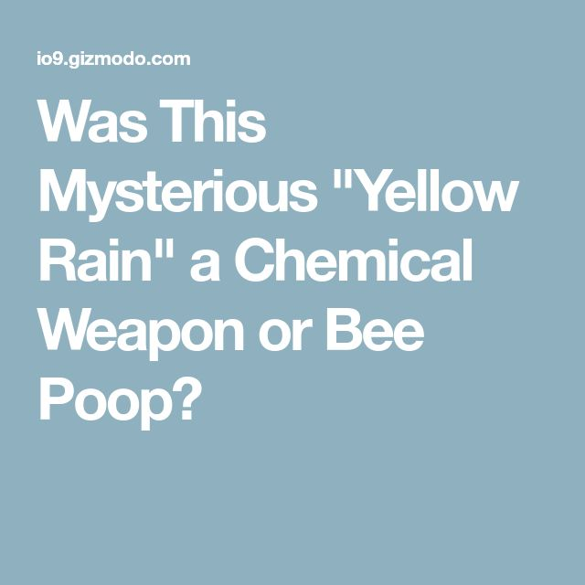 """Was This Mysterious """"Yellow Rain"""" a Chemical Weapon or Bee Poop?"""