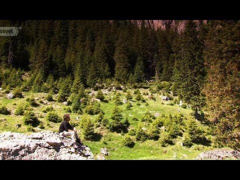 Wild Carpathia 2-subtitrat