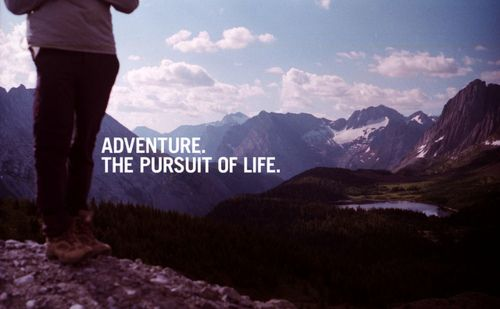 Adventure Quotes   Adventure quotes, adventure quote « Quotes