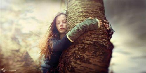 Silvoterapia: Abbracciare gli Alberi per Curarci dai Nostri Mali
