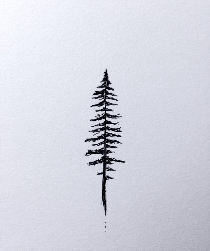 "Pacific Northwest Wonderland on Instagram: ""Creative inspiration  Artwork by @chasingamoment #pnwonderland"""