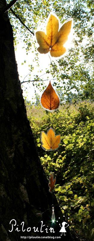* C'est de saison : conserver les feuilles d'automne *