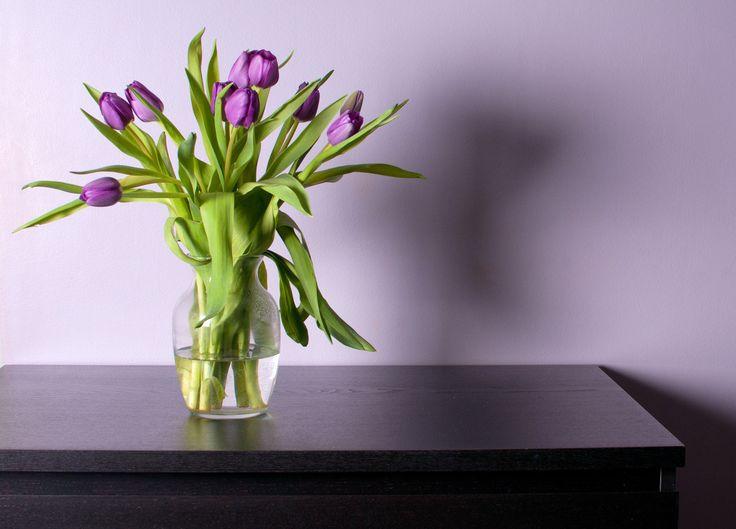 Décoration 10 astuces simples et rapides pour embellir votre intérieur