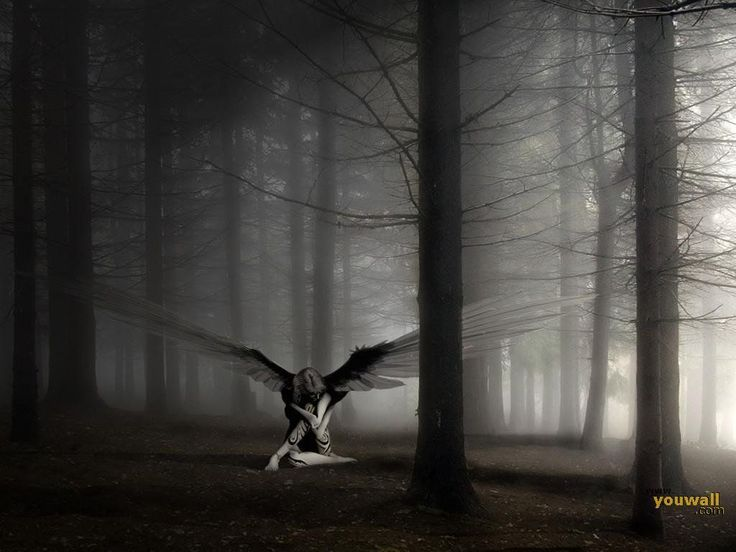undefined Dark Angel Wallpaper (40 Wallpapers) | Adorable Wallpapers