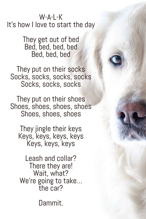 Dog Days And Doggerel 14 Poems About Dogs Dog Poems Dog Quotes