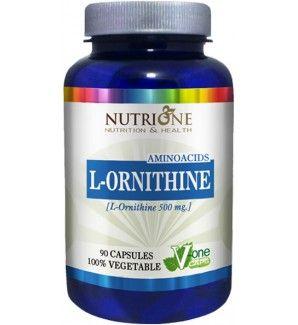 La l-ornitina fortalece el sistema inmunológico, desintoxica el organismo del amoníaco y ayuda a la regeneración del hígado, además de estimular la secreción de insulina.