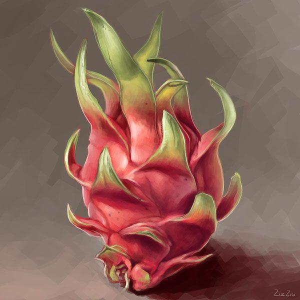 2012.4.11-dragonfruit