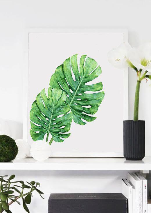 2 carteles. Planta Monstera. Cartel de hojas verdes. por Byoliart