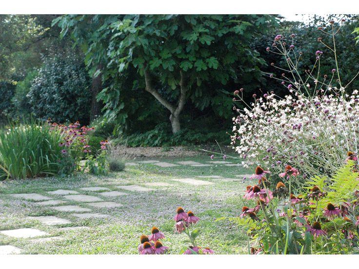 Les 25 meilleures idées concernant tonte pelouse sur pinterest ...