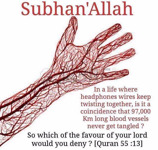 SubhanaAllah #Alhumdulillah #For #Islam #Muslim #Dua #Dhikr #Quran
