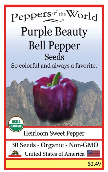 Gorgeous Purple Beauty Bell Pepper seeds: http://www.sandiaseed.com/collections/sweet-pepper-seeds/products/purple-beauty-bell