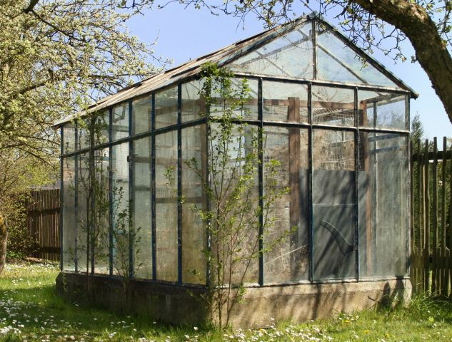Homemade greenhouse tips and tricks on greenhouse for Simple homemade greenhouse