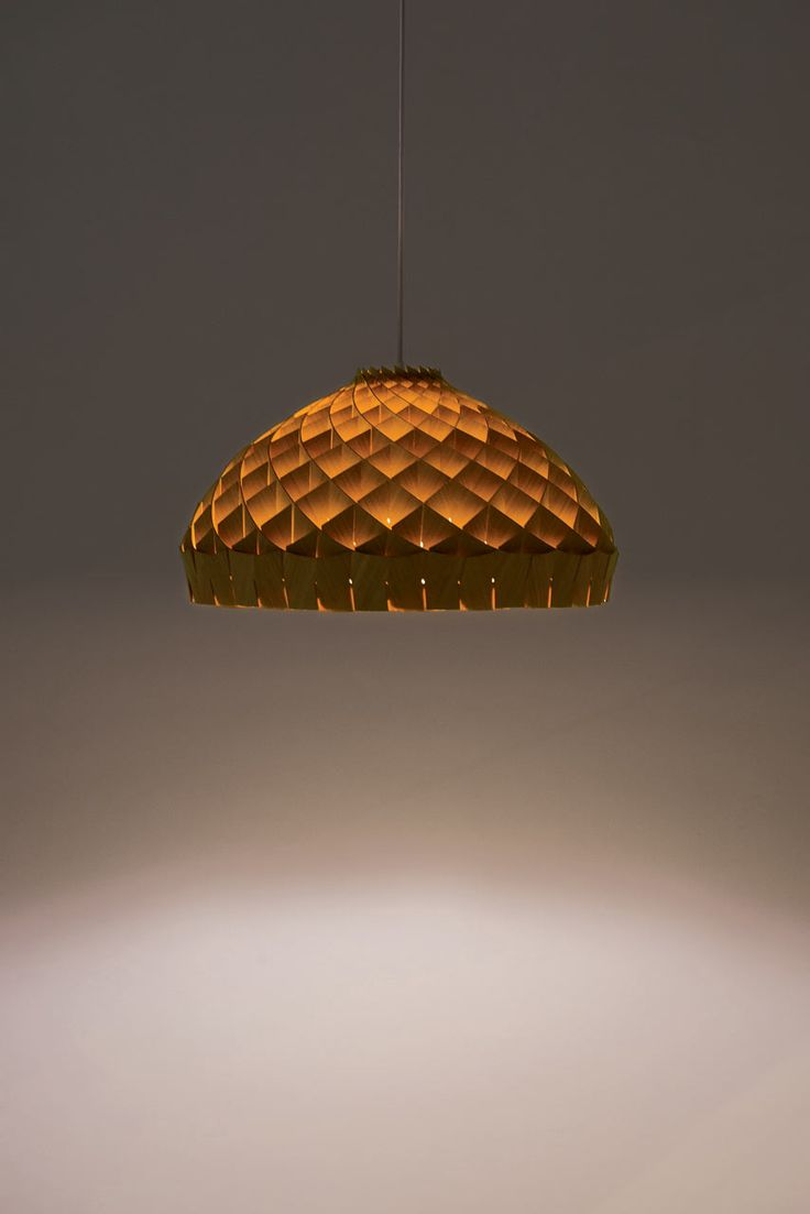A Pendant Lighting Fixture That Pays Homage To The Honeycomb Architecture  Of A Beeu0027s Nest.