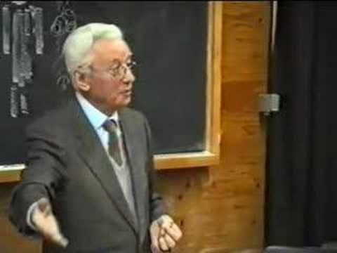 Bruno Munari, Venezia 1992, Scimmietta Zizì