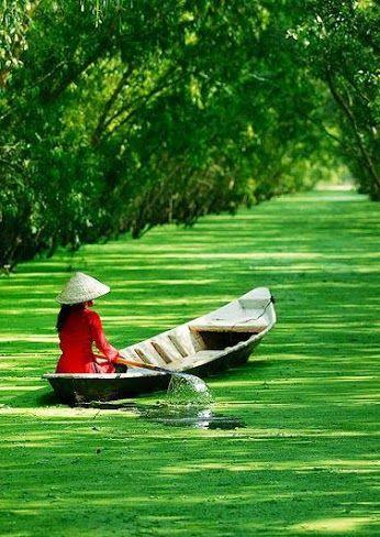 Mekong Delta in Vietnam                                                                                                                                                                                 More