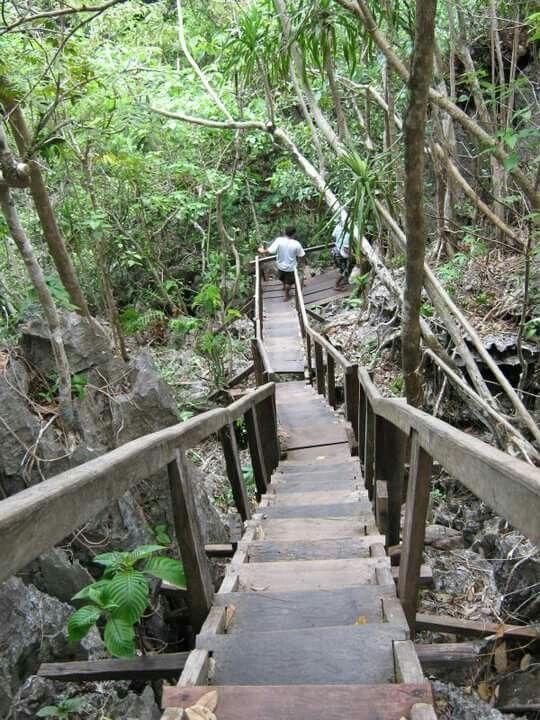 Monkey trail, Puerto Princesa, Palawan