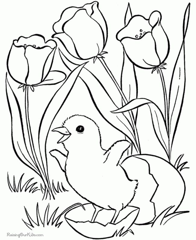free coloring pages for kids pictures photos images - Free Coloring Sheets For Children